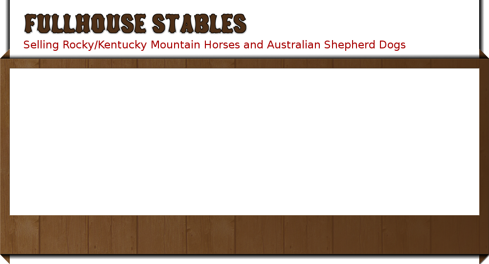 Welcome to Fullhouse Stables. Your navigation should load shortly.
